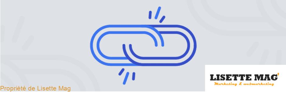 Broken Link Checker pour gérer les liens cassés - WordPress