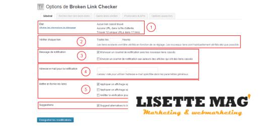 Option del'extension (plugin) Broken Link Chercker