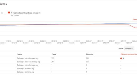 Tutoriel Google webmaster Tools : hEntry, hAtom, hCard…