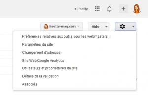 Google Webmaster Tools - paramétrage du domaine favori