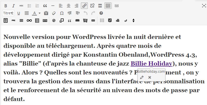 Wordpress 4-3 - Visbilité des liens hypertexte