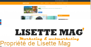 Responsive : affichage du site Lisette Mag sur un écran large