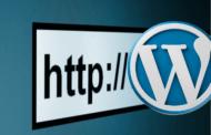 Les champs de l'adresse web du site WordPress sont grisés