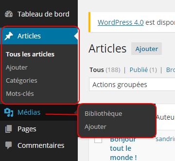 Administration WordPress, Menu et sous-menu